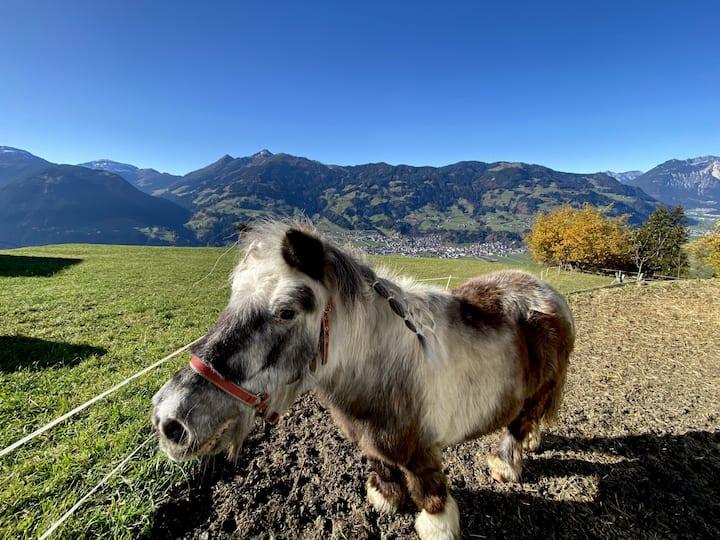Urlaub auf dem Bauernhof in 1098m Höhe