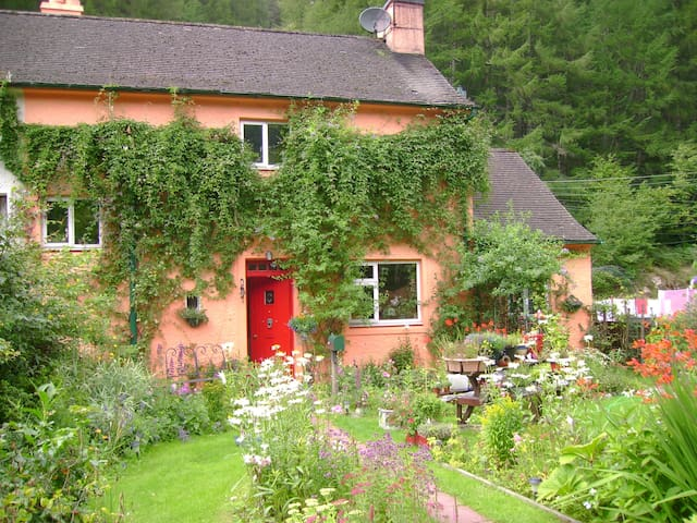 Covent Garden Forestry Cottage - Spean Bridge - Bed & Breakfast
