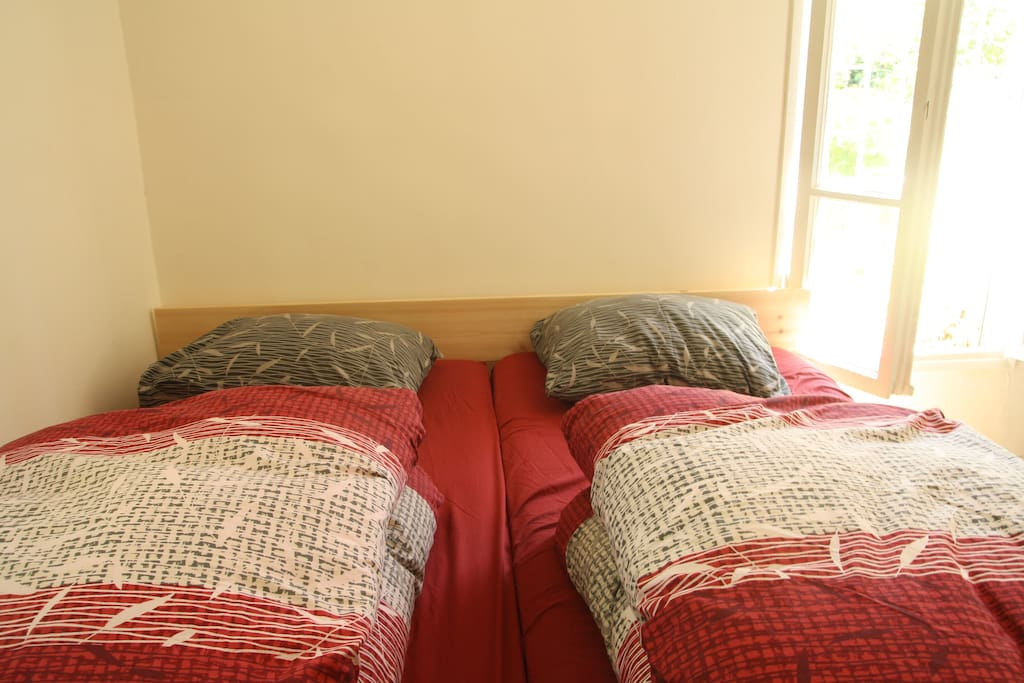 The most comfortable beds!