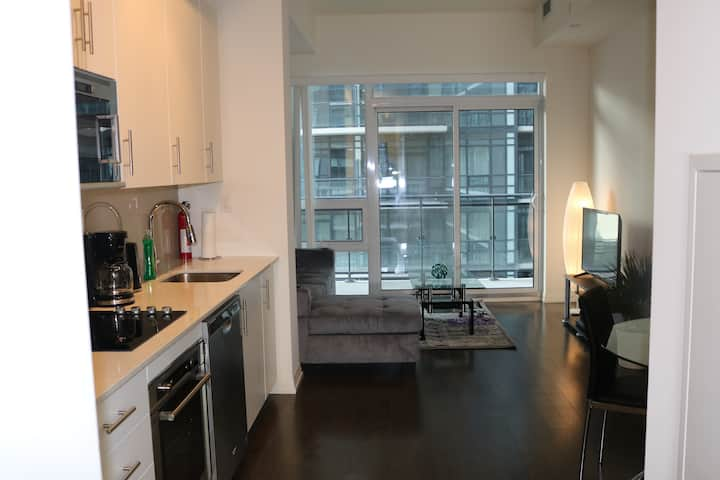 Modern, Clean, Cozy condo in Downtown Toronto 1