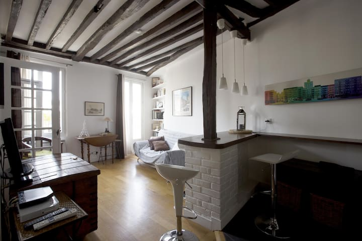 GRACIOUS PENTHOUSE IN LATIN QUARTER - Paris - Apartemen