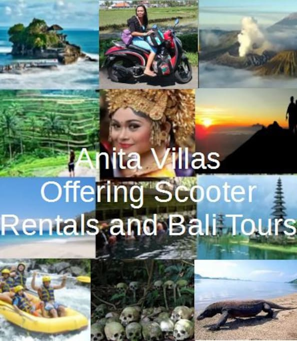 We can coordinate your scooter rental, hotel or airport transfers and the most popular Bali tours with our reliable and trusted drivers.
