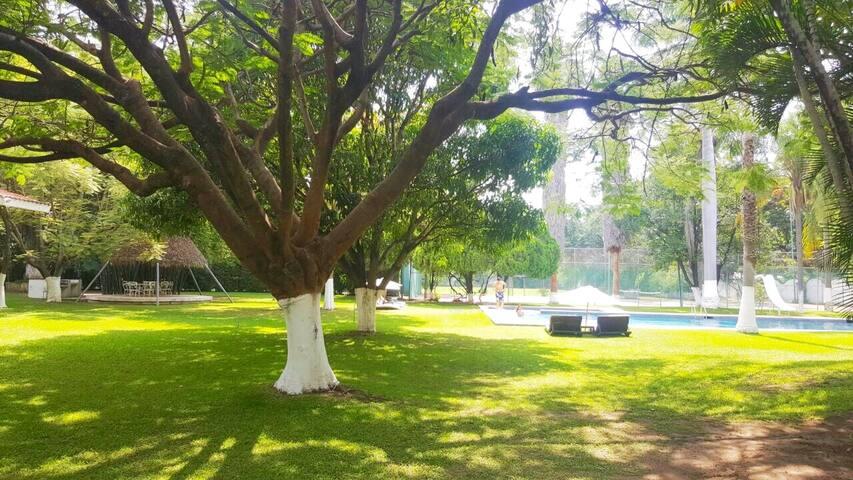 Tranquilidad, sosiego y descanso en bello jardín. - Yautepec - Bed & Breakfast