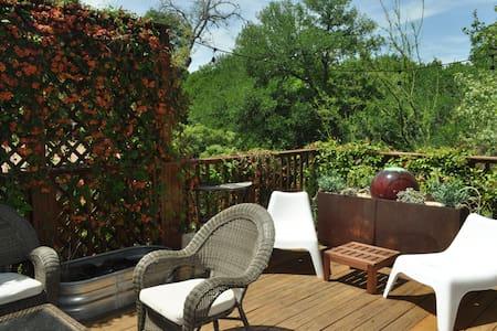2/1 with awesome patio near Zilker - Austin