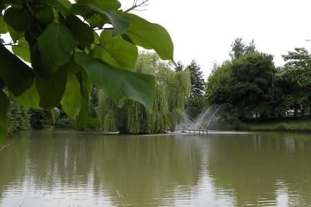Gite des Pernards - La Chapelle-Saint-Sauveur - Outros