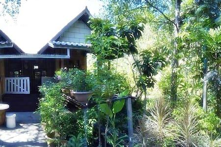 บ้านลำพู-หิ่งห้อย