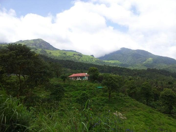 wayanad adventures  eco lodging