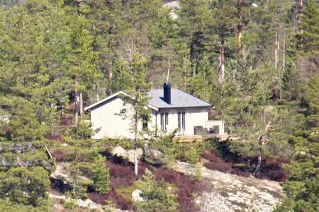 Hüttchen in der Telemark, NO - Felle