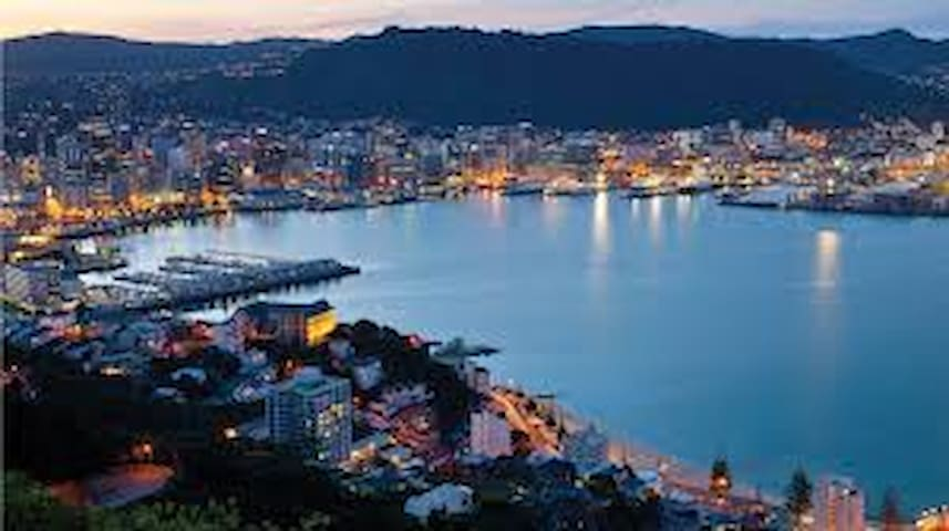 Wellington CBD & South Coast