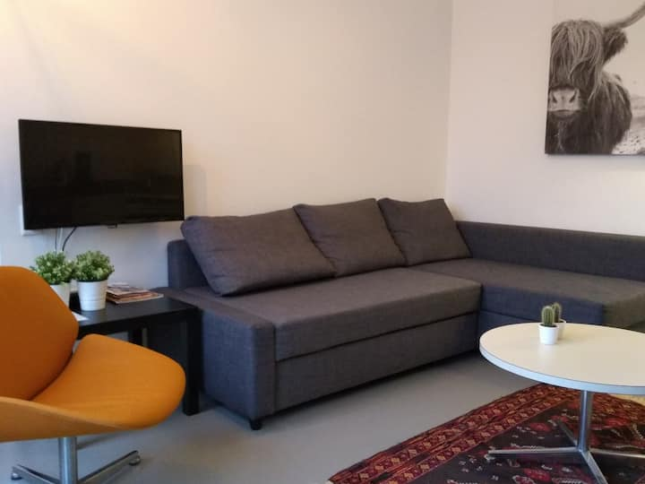 Studio, in city villa (corona proof)