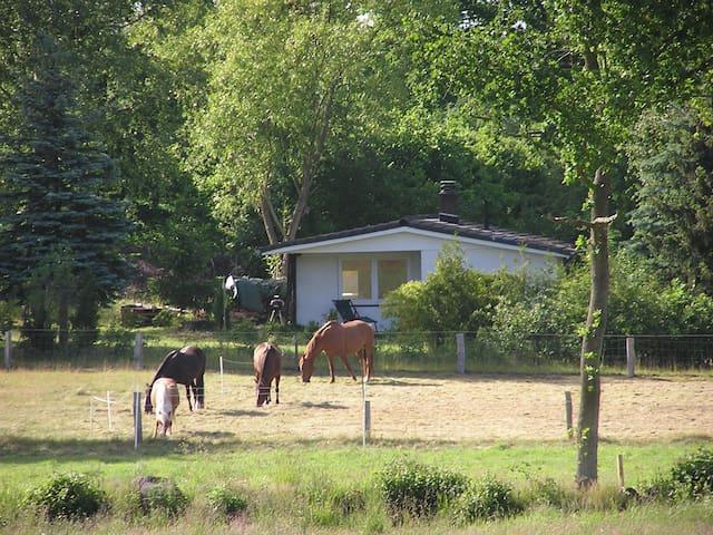 Idyllisches Haus bei Travemünde - Ratekau - Casa