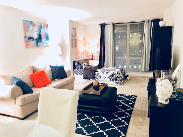 *** LUXURY Apartment in Downtown SILVER SPRING ***