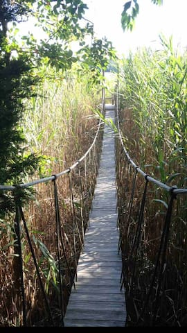 52 foot suspension bridge on property. Referred to as one of the seven wonders of Cape Cod by the Cape Cod Times