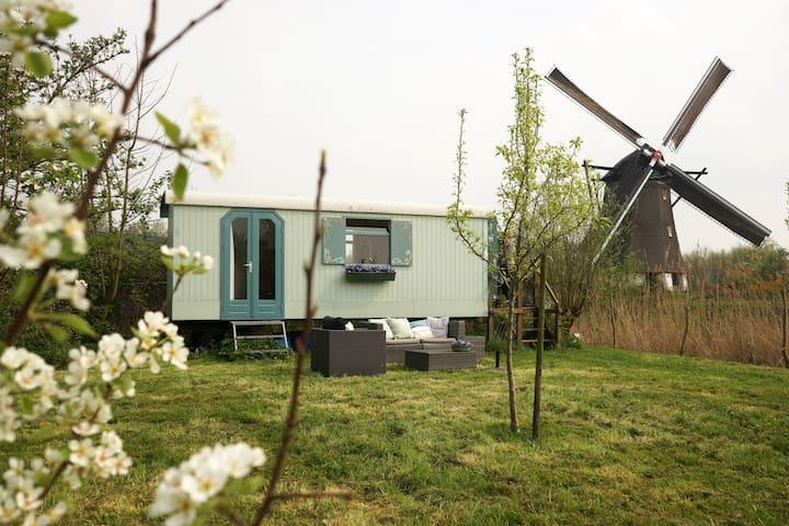 Pipowagen aan voet van een molen - Zuilichem - Bed & Breakfast
