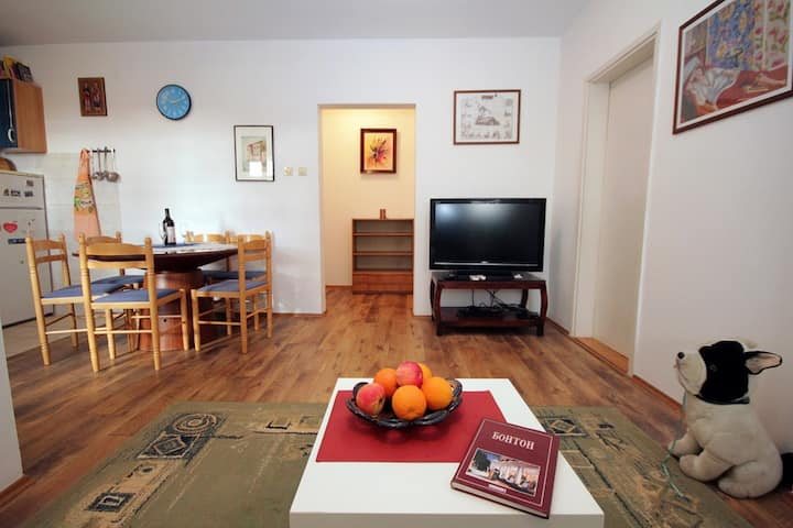 Apartment in the center of Petrovac