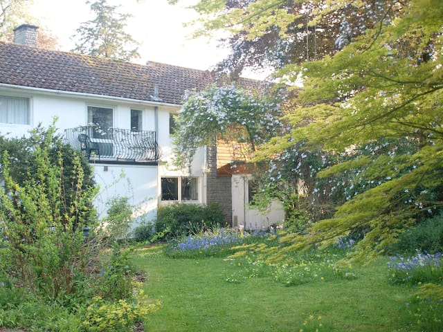B&B in Butleigh, near Glastonbury. - Butleigh, near Glastonbury