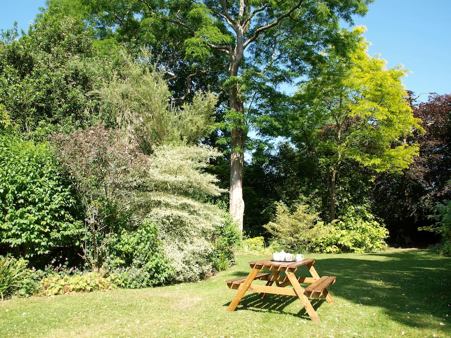 A garden to enjoy and relax in.