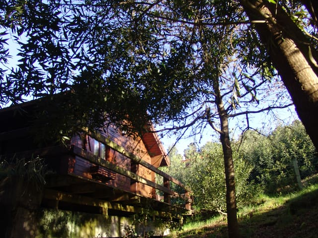 Wood Cottage in the Green w/ View + - Vila Nova de Cerveira - House