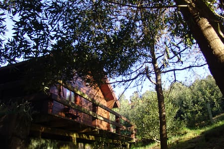 Wood Cottage in the Green w/ View + - Vila Nova de Cerveira - บ้าน