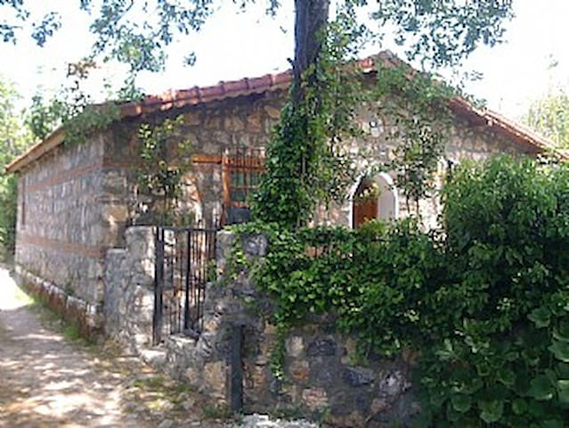Fig Garden Cottages, Quince Cottage - Kayaköy