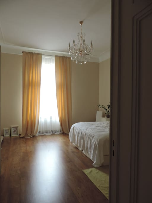 Spacious Luxury Apartment In Center Apartments For Rent