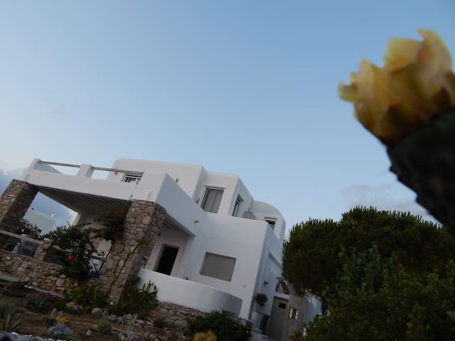 Magnolia,3bedrooms,great view. - Mykonos - Talo