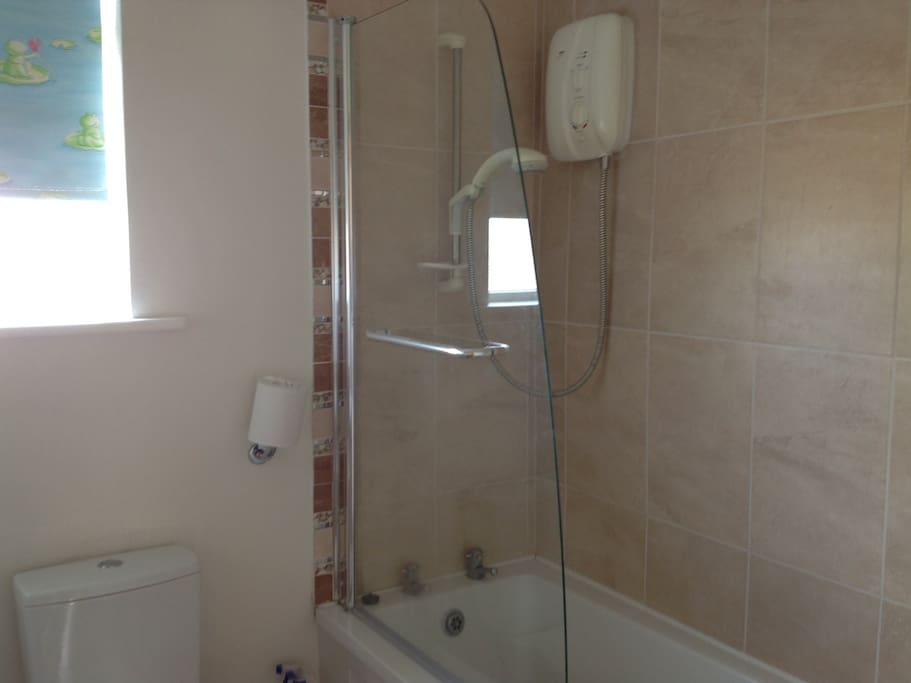 Electric shower in the bathroom