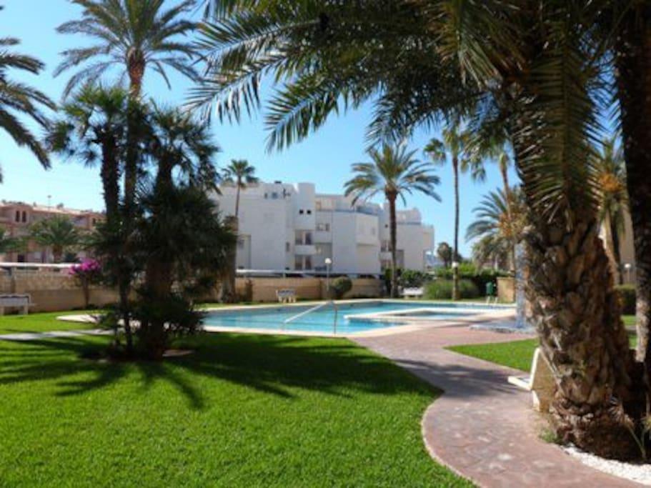 Studio en la playa con piscina d nia comunidad for Camping con piscina climatizada en comunidad valenciana