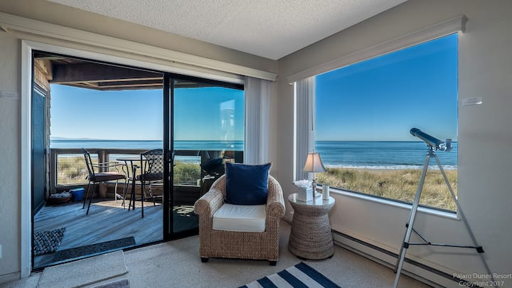 Gorgeous Ocean View 1 Bedroom Monterey Bay Condo