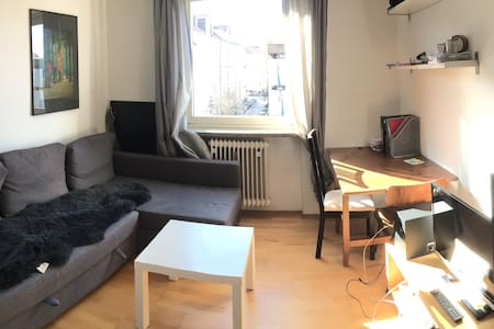 zentrale Wohnung/central appartment - ミュンヘン - アパート