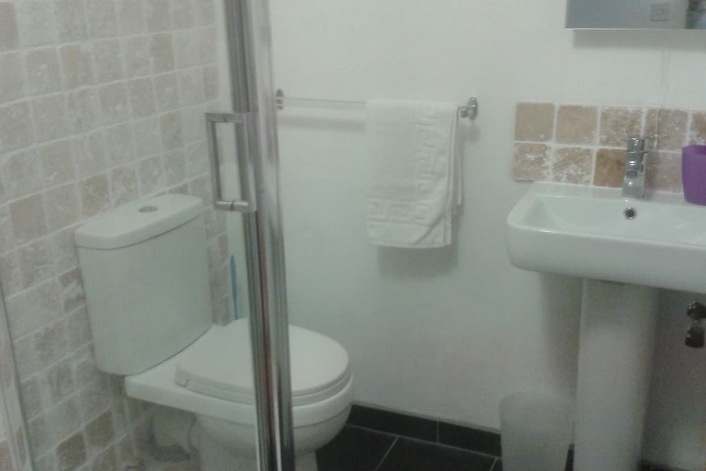 Bathroom sink, shower and toilet