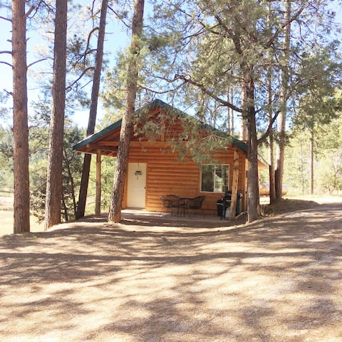 Mountain Getaway #1 Bear Cabin