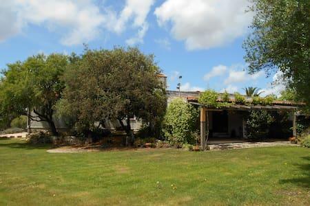 Villa vacanze vicinissima a Alghero - Sassari - Villa