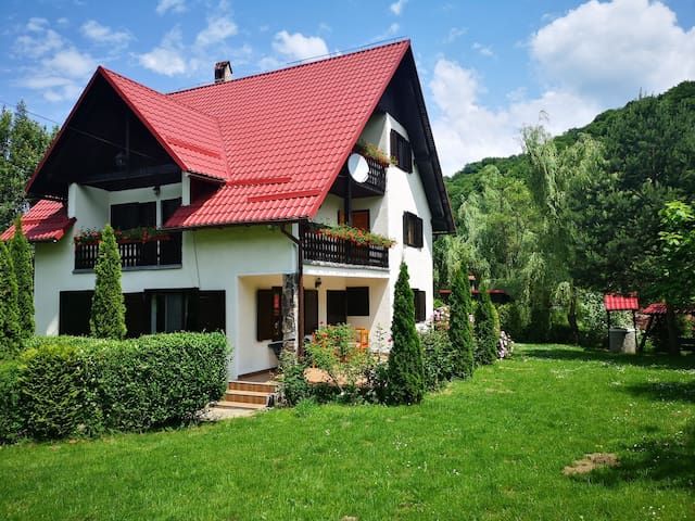 Beautiful house in the mountains of Transylvania