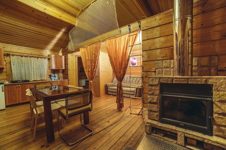 Cozy home studio with a fireplace - Zelenogorsk