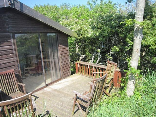 Tree House in sheltered valley with path to cove. - Solva - Tretopphus