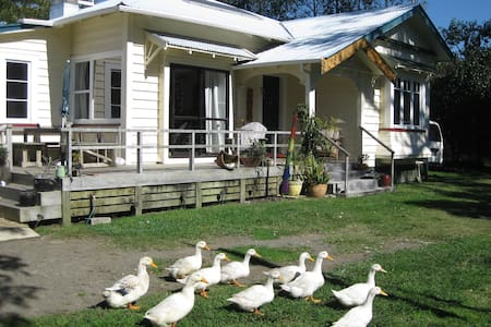 Home-stay Haven - B&B - Opotiki