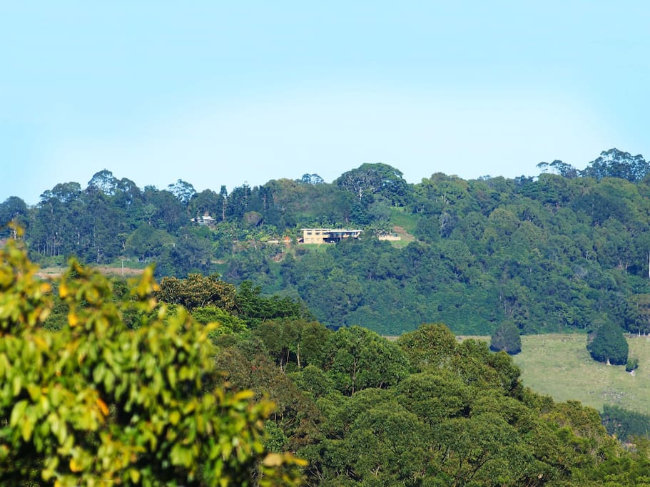 Nestled in hills of the Byron Bay Hinterland