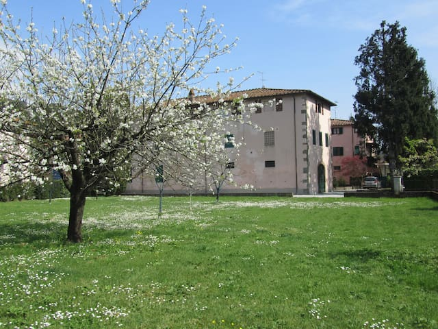 "B&B ""La Fattoria 1700 "" - San Martino In Freddana-monsagr - Bed & Breakfast"