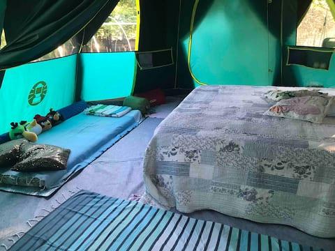 Tente octogonale 12m2/h215 - Pays Niçois
