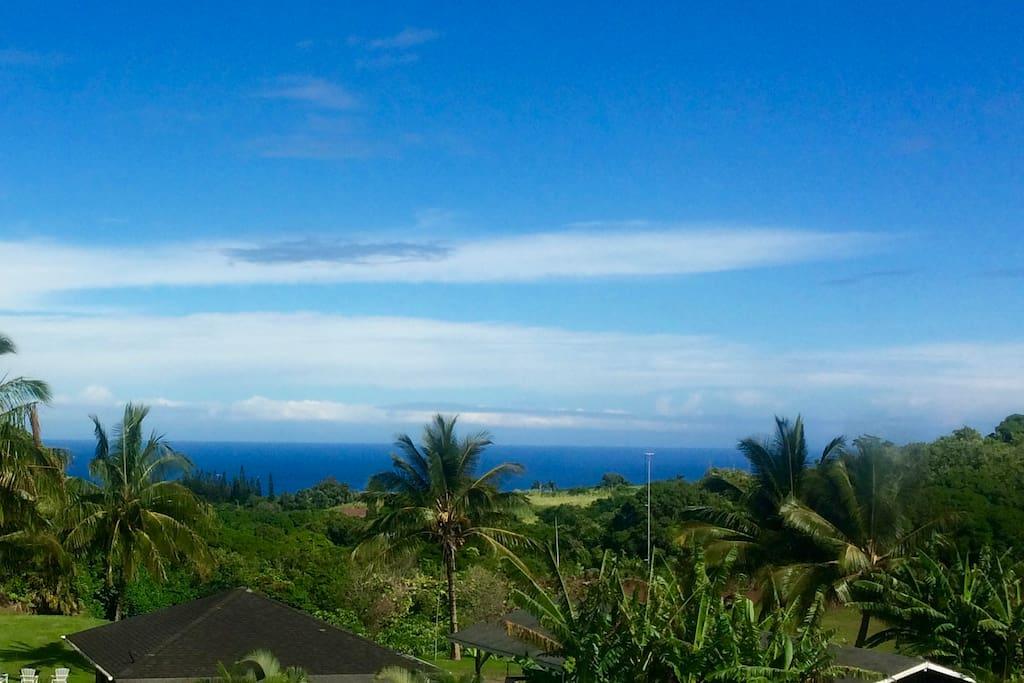 "Ocean view. Famous ""Jaws"" surf break is minutes away."