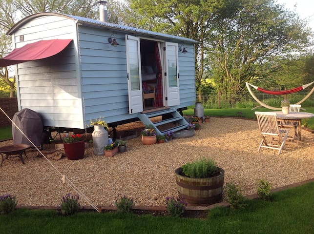 Secluded Shepherds hut in Suffolk - Suffolk - Chatka