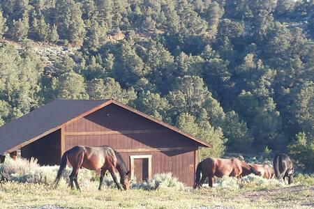 Reno Mountain Retreat House
