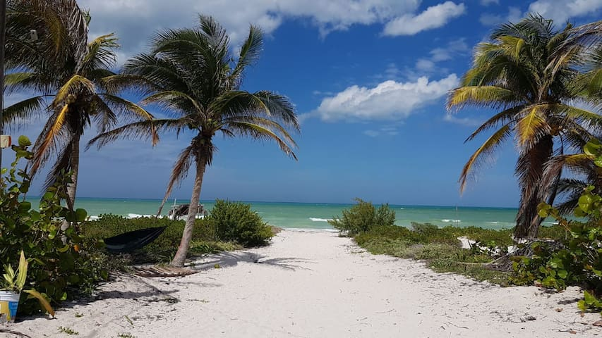 La Playa en la Casa
