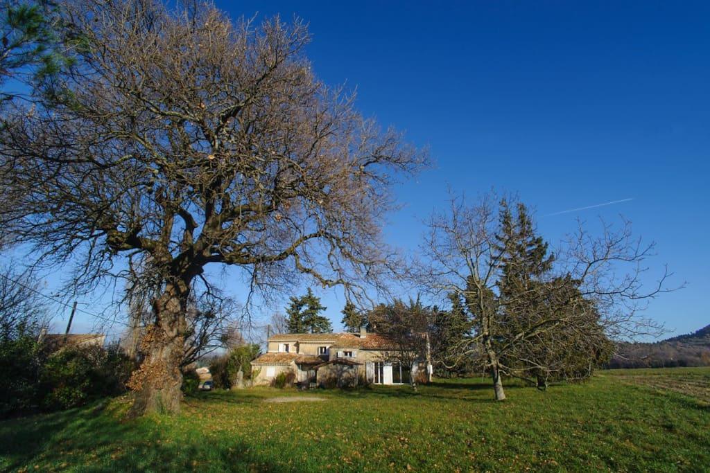 Vue de la maison depuis le jardin - novembre