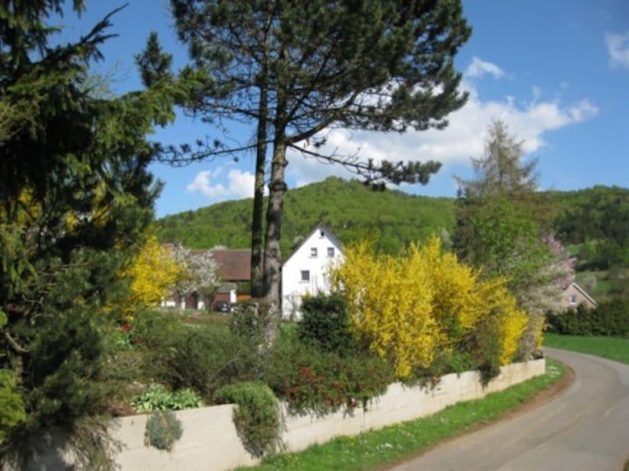Das Haus von der Straße aus gesehen mit großem Garten