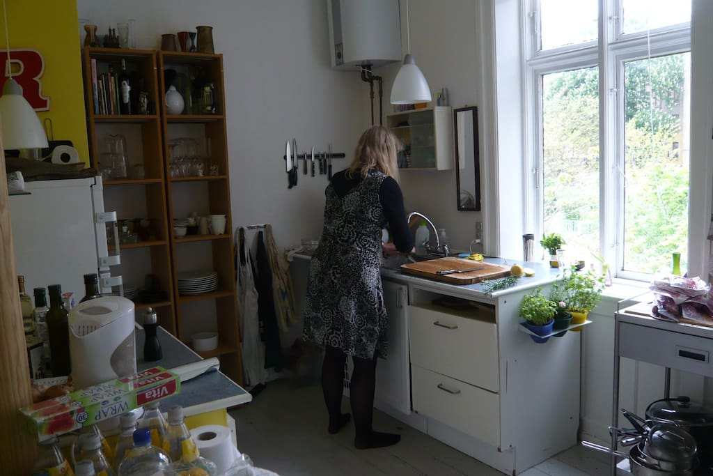 Kitchen w dishwasher, fridge, gas cooker and oven