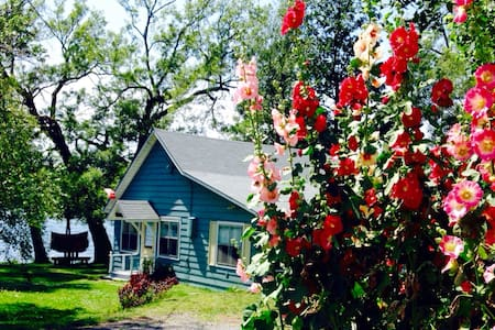 Waterfront Cottage :  10 Minutes from Picton - Prince Edward