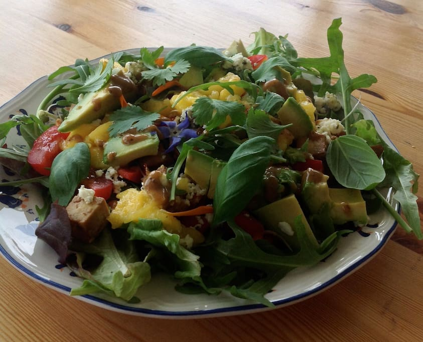 Delicious Organic Vegetarian Meals (booked in advance)