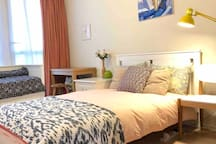 Spacious Central London Double Room